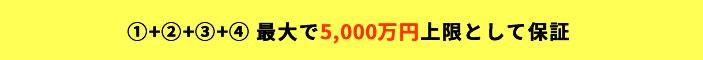 最大で5,000万円上限として保証