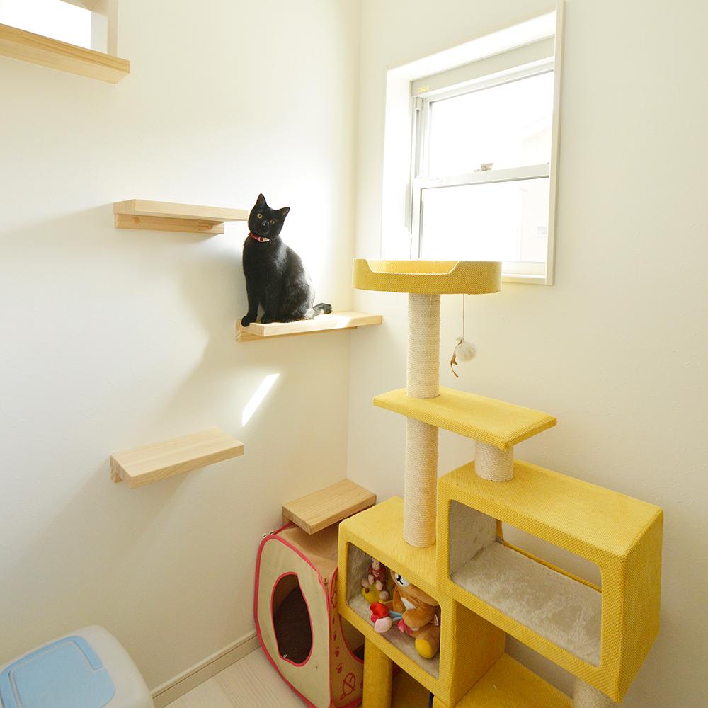 家づくりでこだわった所は?たくさんあります!<br /> 猫専用の部屋や玄関の土間収納、和室の位置、広いバルコニー、吹抜け、男性専用のトイレ、1階の寝室…など、本当にいろいろこだわりました。<br /> 一生に一度の家造りなので、絶対に妥協したくなかったです。
