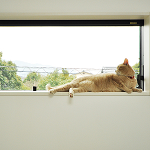 住み心地はどうですか?真冬の寒い日でも家の中がとにかくあったかいんです。<br /> 快適な暮らしに、家族はもちろん、愛猫の「もものすけ」も大満足しています。